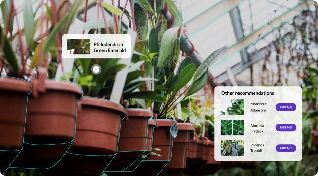 Augmented reality pop-up indicating the plant pictured is a 'Philodendron Green Emerald.' An additional pop-up recommends other types of plants.